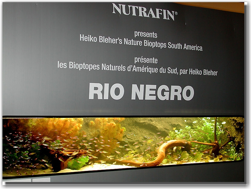 Biotope-Aquarium-of-H blehe