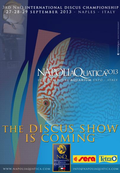 NaQ2013 - Discus Show