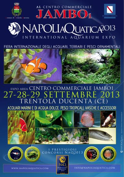 NaQ2013_locandina_it